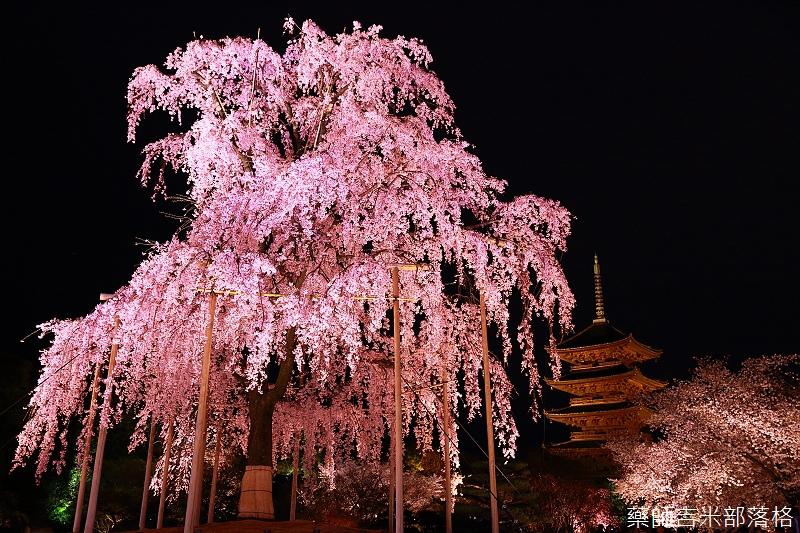 Kyoto_150402_1739.jpg