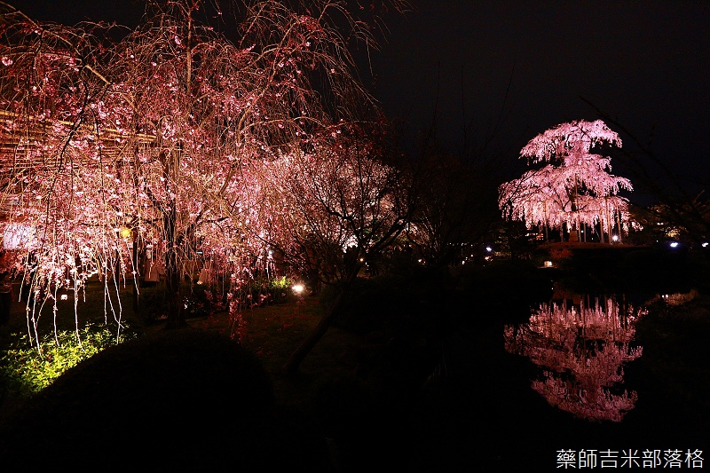 Kyoto_150402_1768.jpg