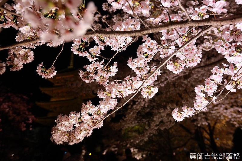 Kyoto_150402_1794.jpg