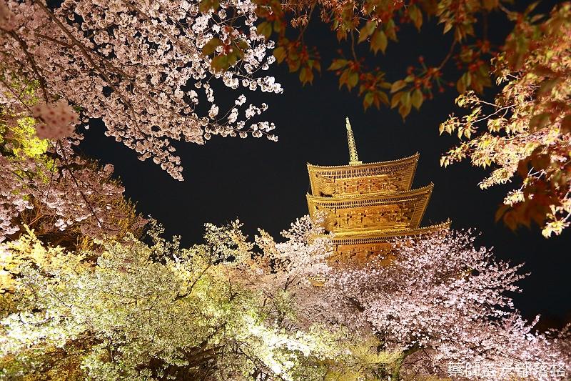 Kyoto_150402_1881.jpg
