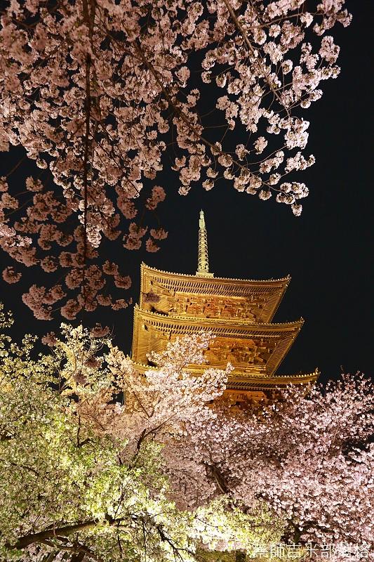 Kyoto_150402_1888.jpg