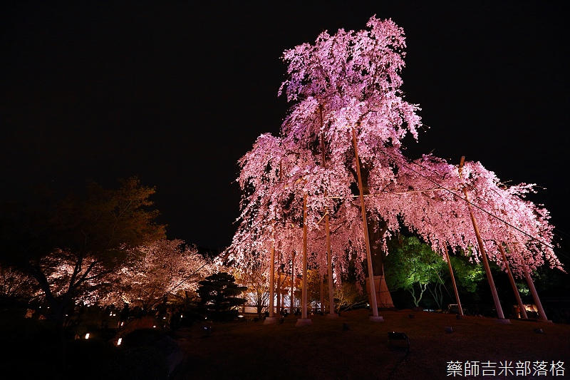 Kyoto_150402_1907.jpg
