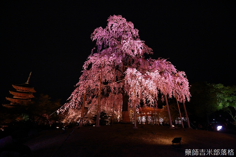 Kyoto_150402_1911.jpg