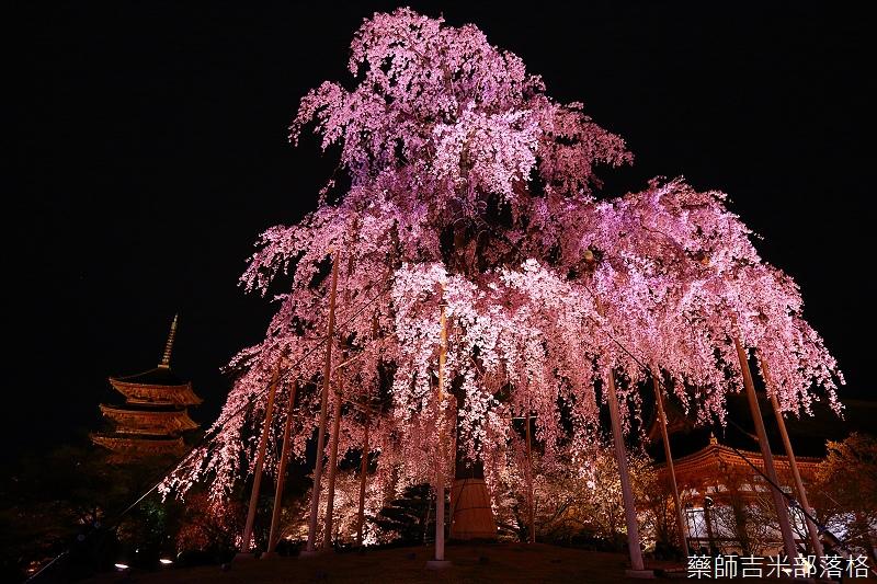 Kyoto_150402_1919.jpg