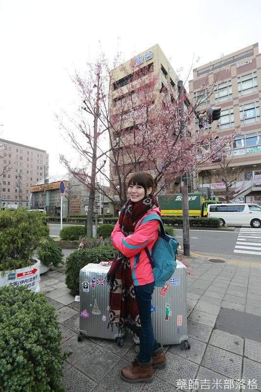 Kyoto_Sakura_019.jpg