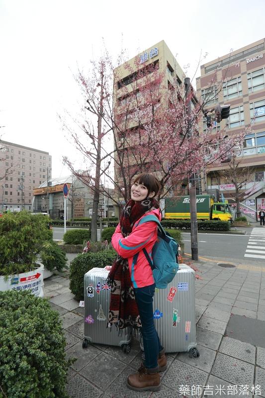Kyoto_Sakura_020.jpg