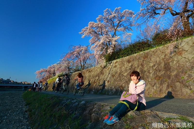 Kyoto_Sakura_065.jpg