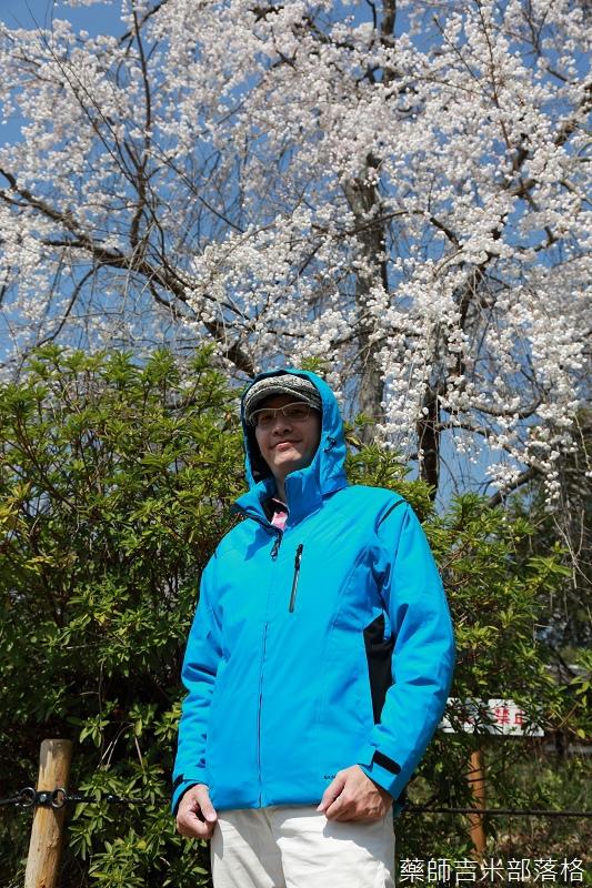 Kyoto_Sakura_173.jpg