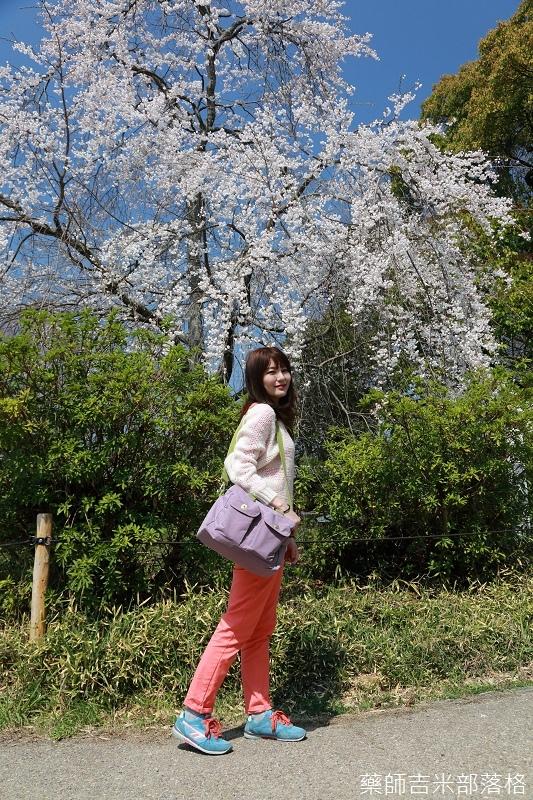 Kyoto_Sakura_187.jpg