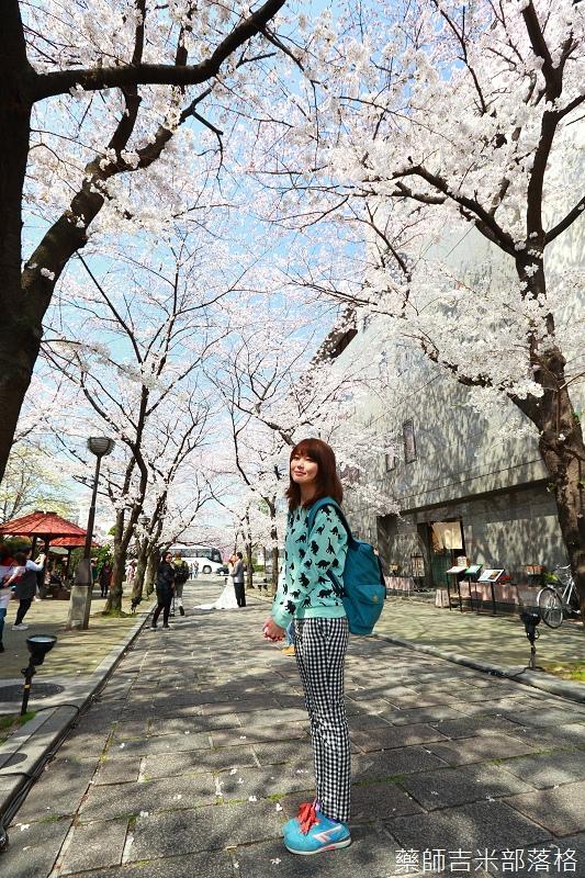 Kyoto_Sakura_414.jpg