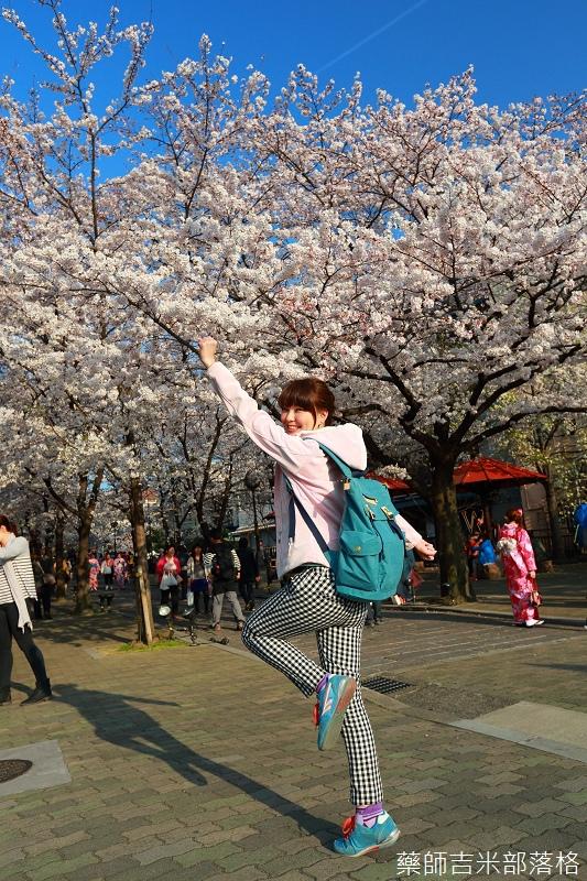 Kyoto_Sakura_457.jpg