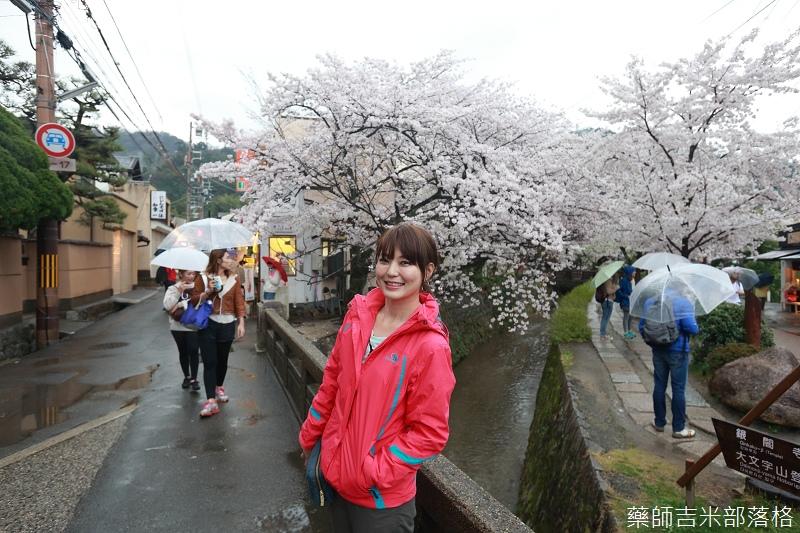 Kyoto_Sakura_568.jpg