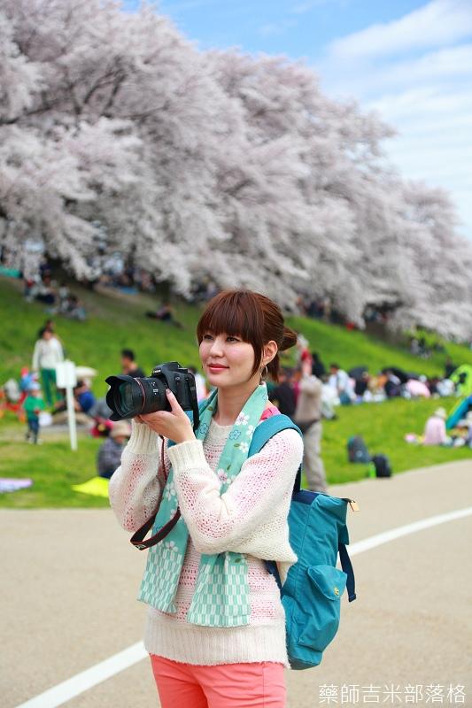 Kyoto_Sakura_652.jpg