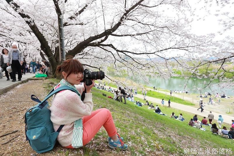 Kyoto_Sakura_685.jpg