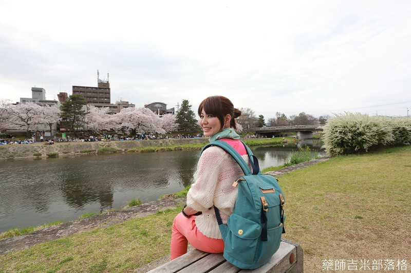 Kyoto_Sakura_686.jpg