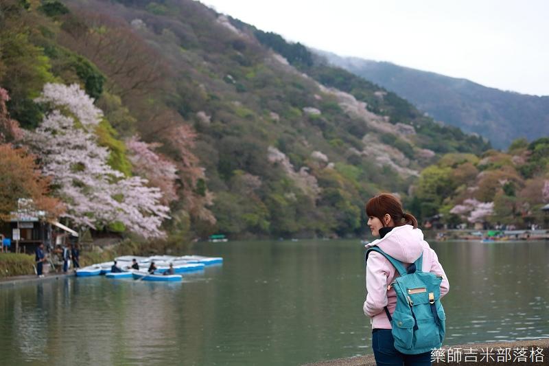 Kyoto_Sakura_742.jpg
