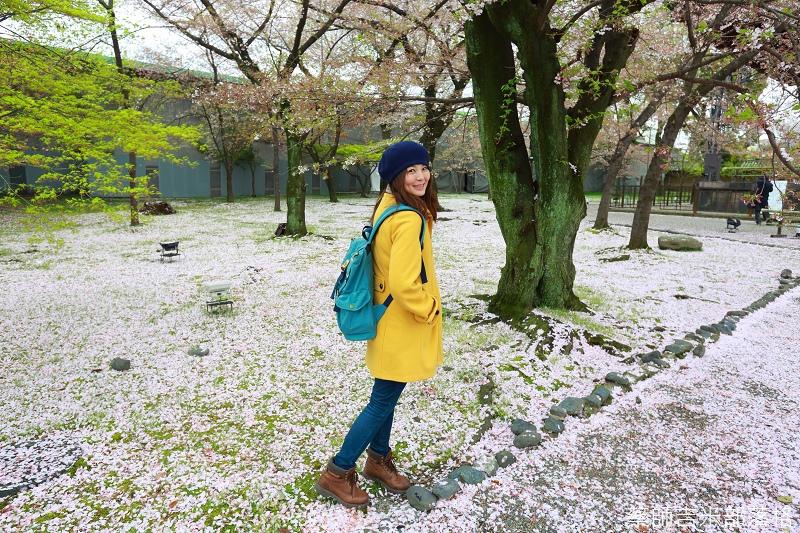 Kyoto_Sakura_744.jpg