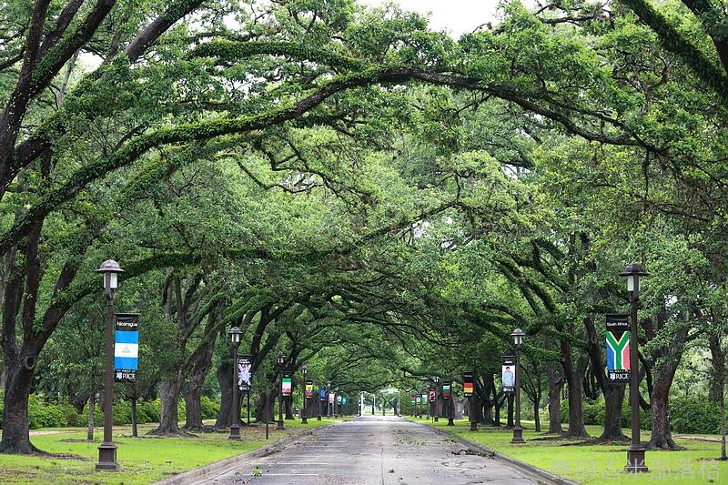 Houston_150517_058.jpg