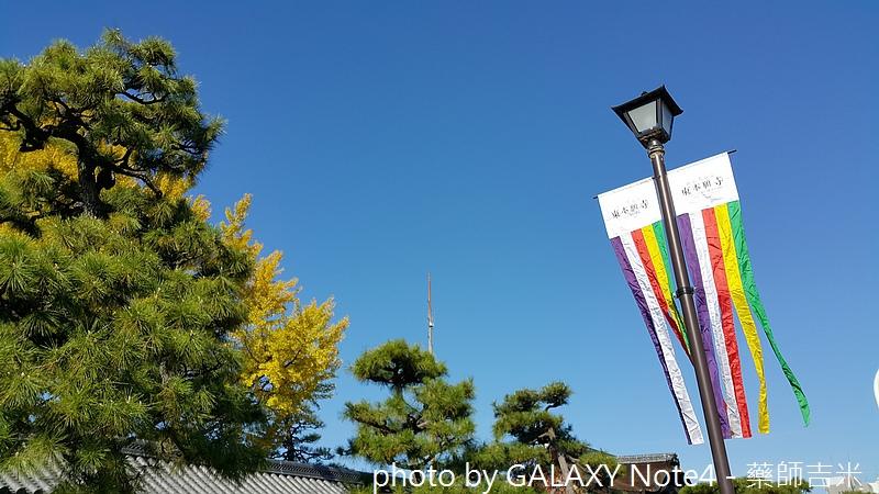 20141121_103858.jpg