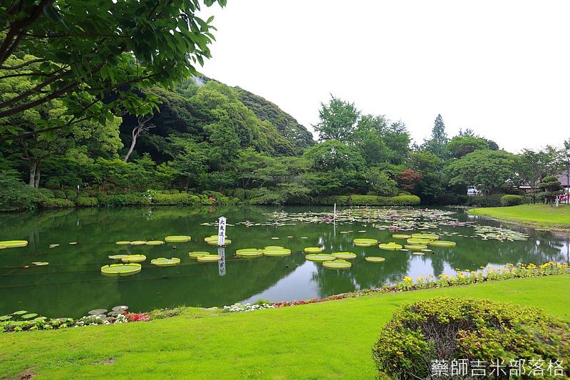 kyushu_150630_174.jpg