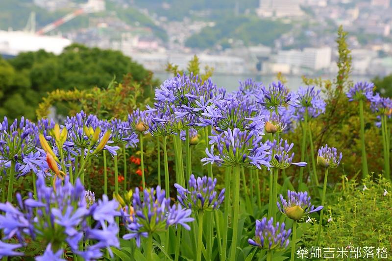 kyushu_150702_247.jpg