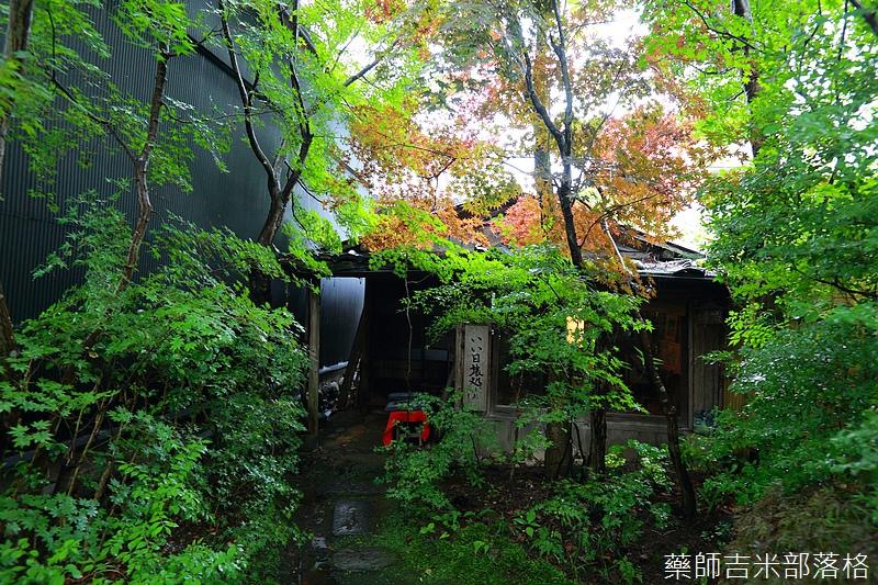 kyushu_150630_730.jpg