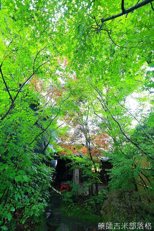 kyushu_150630_747.jpg
