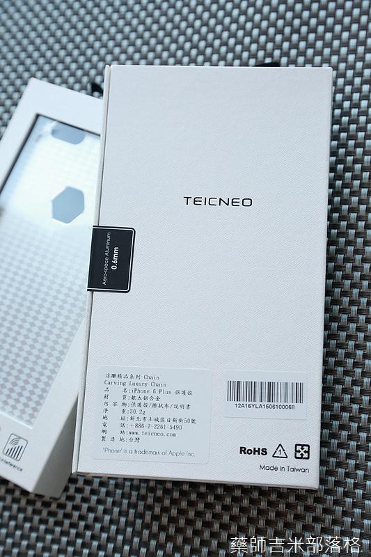 Teicneo_008.jpg