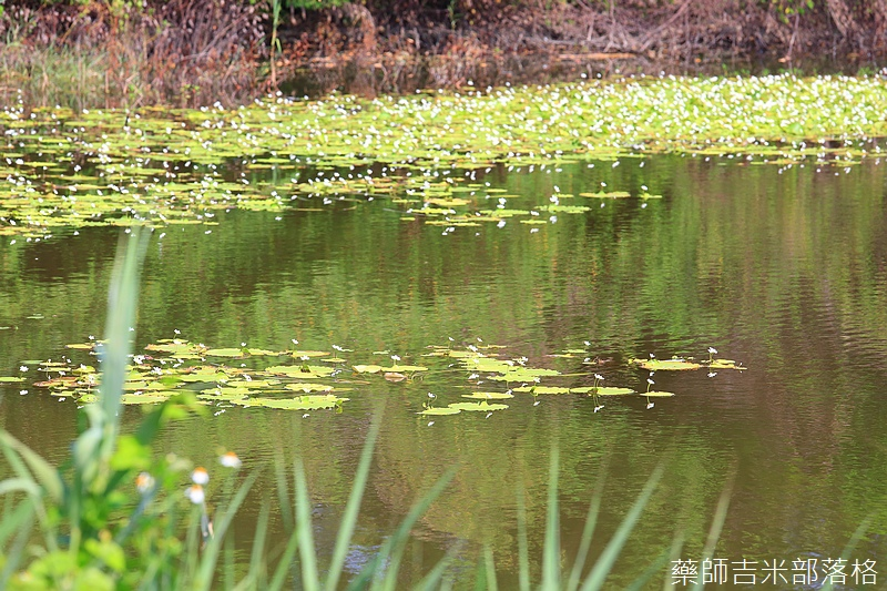 Kaohsiung_096.jpg