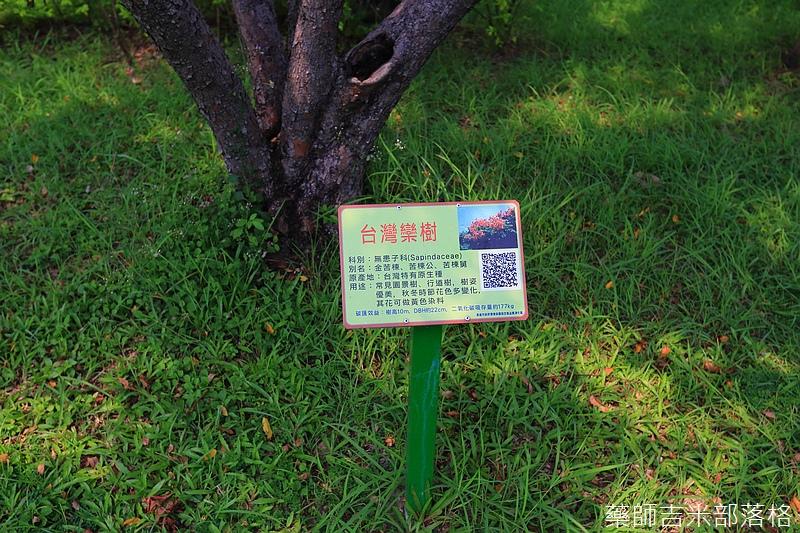 Kaohsiung_445.jpg