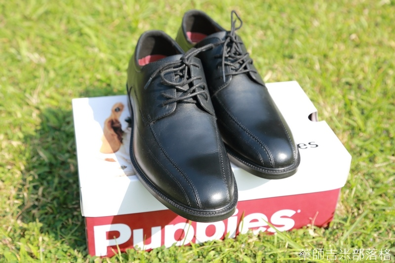 Hush_Puppies_15_236.jpg