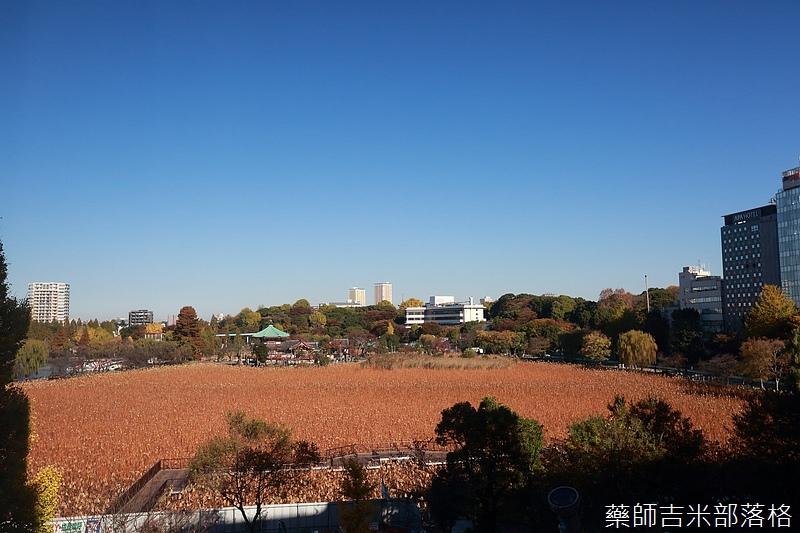 Tokyo_1512_090.jpg