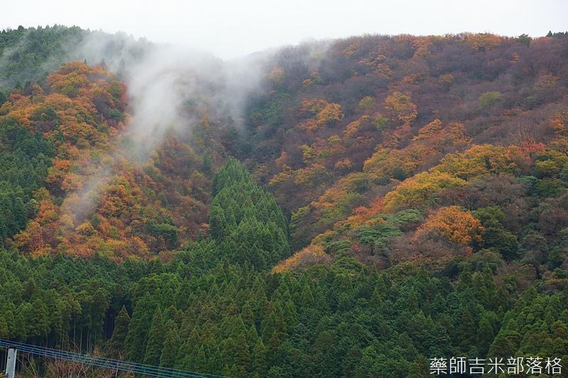 yasuha_857.jpg