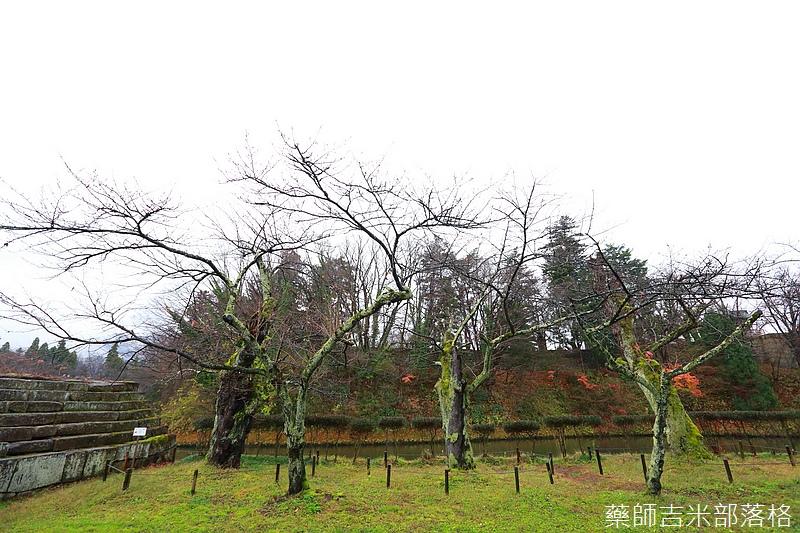 Aizu_151129_039.jpg
