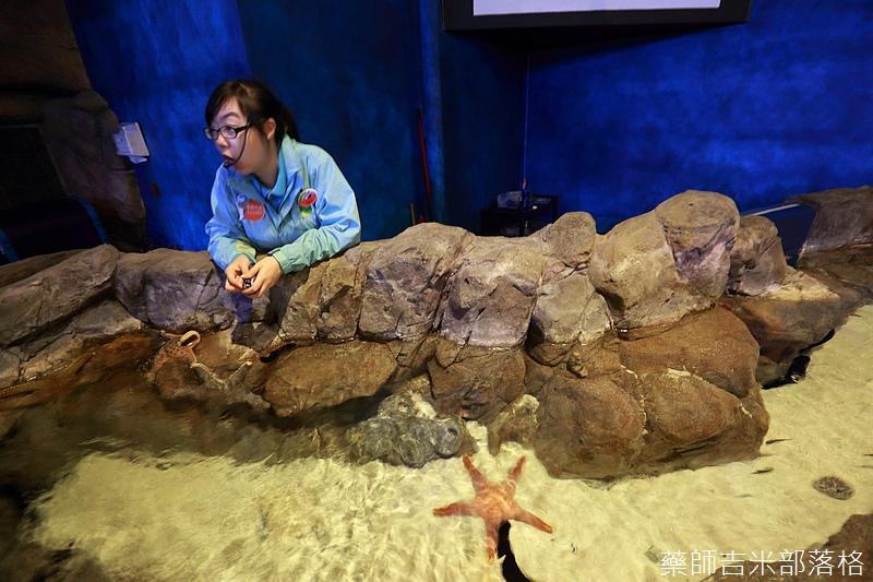 HK_Ocean_Park_0199.jpg