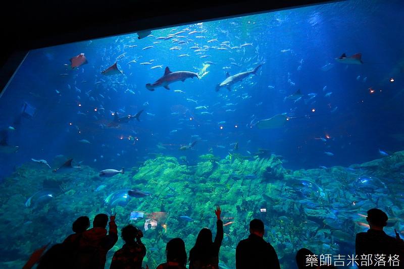 HK_Ocean_Park_0363.jpg