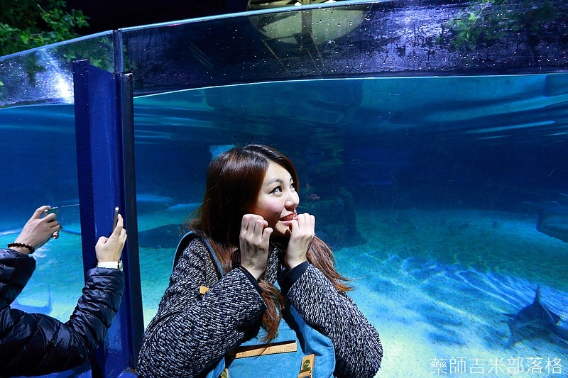HK_Ocean_Park_1290.jpg