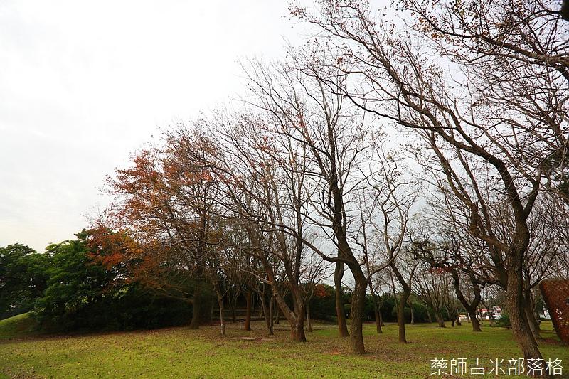 Taoyuan_160127_419.jpg