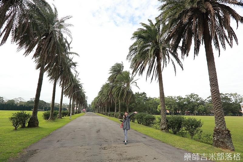 Taoyuan_160127_528.jpg
