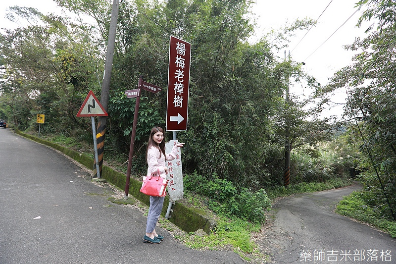 Taoyuan_160127_922.jpg