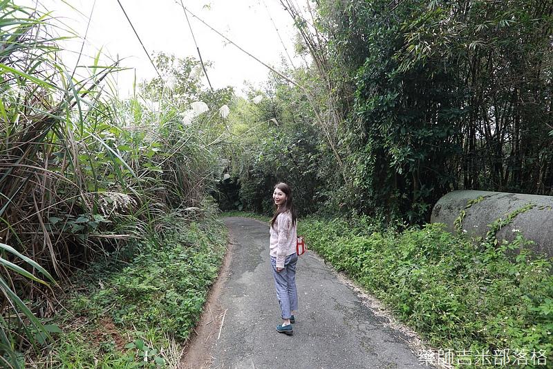 Taoyuan_160127_924.jpg