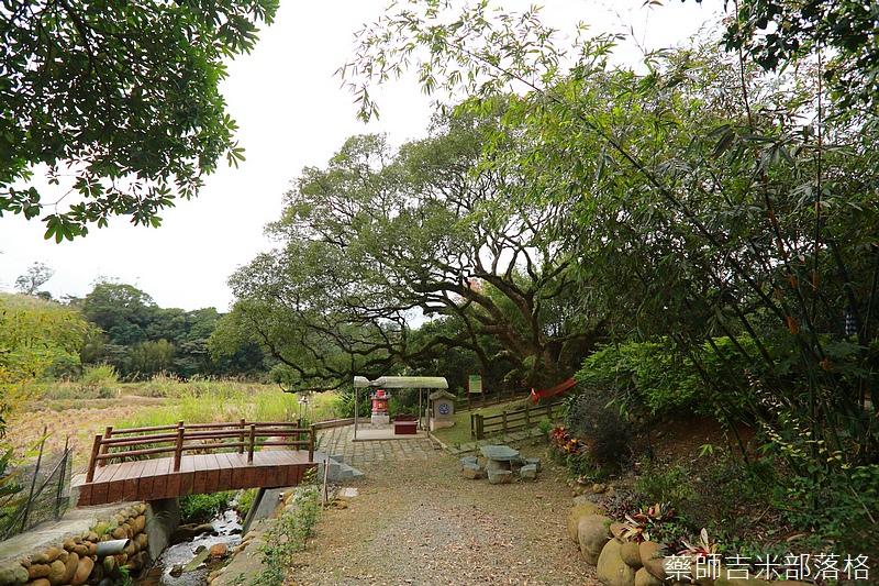 Taoyuan_160127_925.jpg
