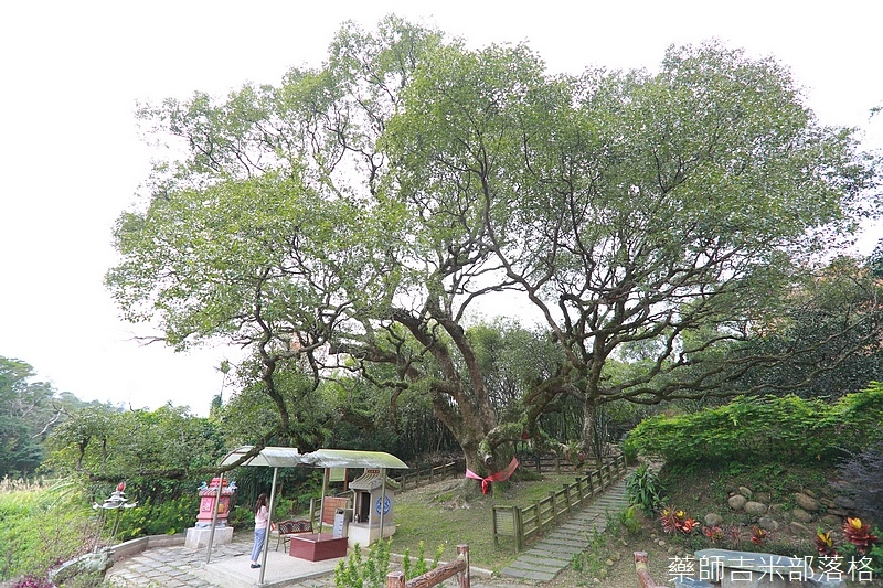 Taoyuan_160127_932.jpg