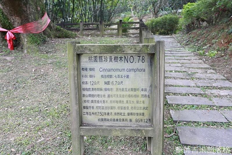Taoyuan_160127_936.jpg