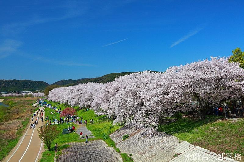 Kyoto_150404_0167.jpg