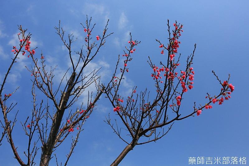 Hsinchu_160301_0331.jpg