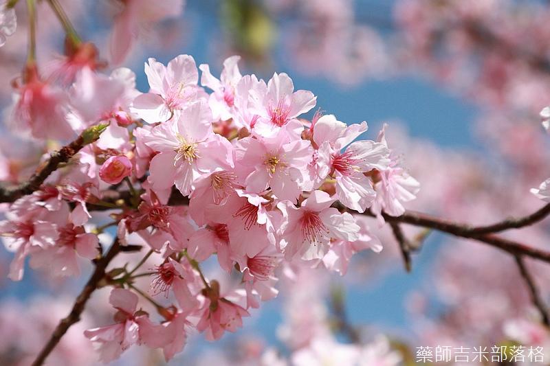 Hsinchu_160301_0494.jpg