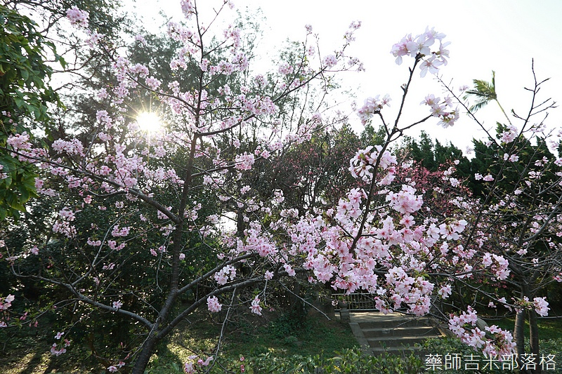 Hsinchu_160301_0567.jpg
