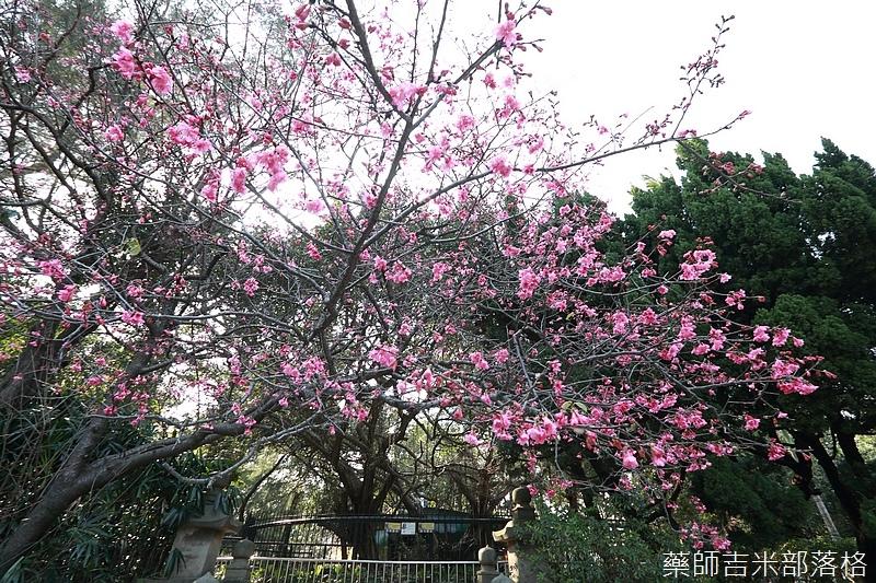 Hsinchu_160301_0569.jpg