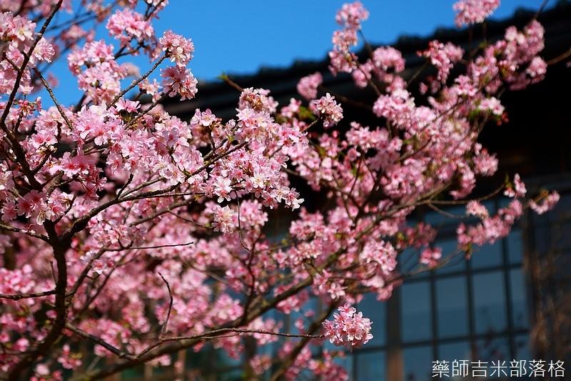 Hsinchu_160301_0717.jpg
